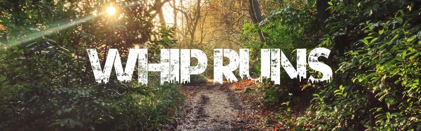 Whip Runs